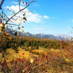Tri najpopularnije destinacije za letovanje u Srbiji koje zamenjuju more
