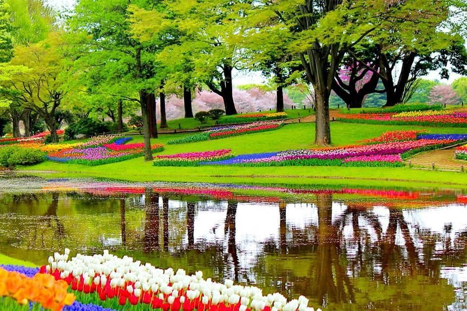 Park Keukenhof u Holandiji