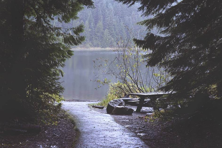 Putić koji vodi do jezera kroz šumu
